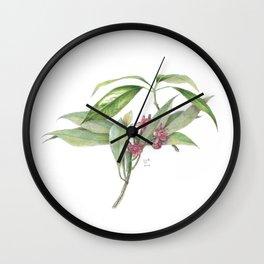 Star Anise Botanical Illustration Wall Clock