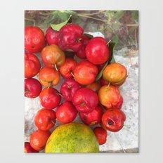 Juicy Fruit Canvas Print