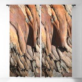 Eucalyptus tree bark texture Blackout Curtain