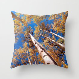 Aspen Trees Against The Sky In Crested Butte, Colorado Throw Pillow