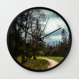 road in a forest Wall Clock