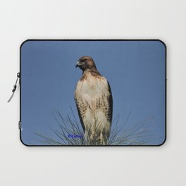 Red-Tailed Hawk on Watch at Foothill and B Street Laptop Sleeve