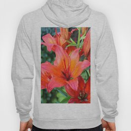 Day Lilies Hoody