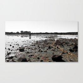 Terra_06 Canvas Print