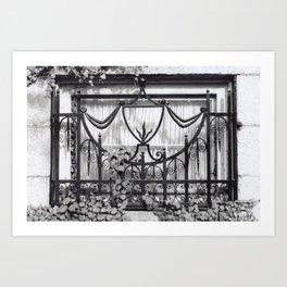 a window in providence Art Print