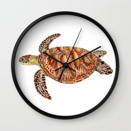 Green turtle Chelonia mydas Wall Clock