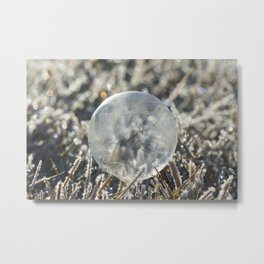 Frozen Morning Light  Metal Print
