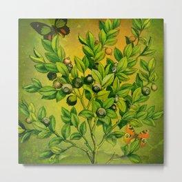Green Plant Study Metal Print