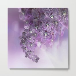 Violet Purple Orchids Metal Print