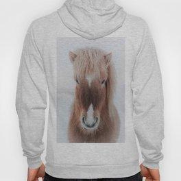 Icelandic Horse Hoody