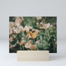 Summer Butterfly on 35mm Film. Analog Nature Photography. Schwarzwald, Germany. European Travel Print. Wall Art.  Mini Art Print