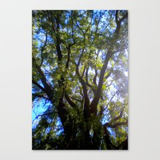 everything was beautiful Canvas Print