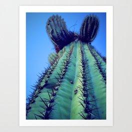 Saguaro Spikes Art Print
