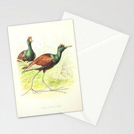 parra gymnostoma2 Stationery Cards