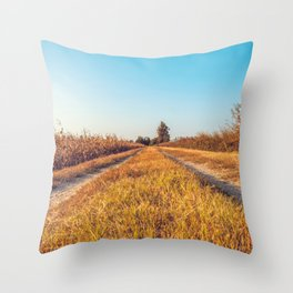 Country dirt road in Lomellina at sunset Throw Pillow