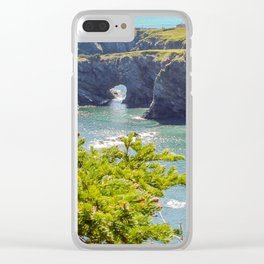 Burnt Point Flambro Head Clear iPhone Case