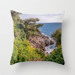 Yellow flowers on the seacoast of Cap Martin in a sunny winter day Throw Pillow