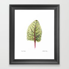 Swiss Chard Framed Art Print