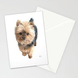 My Yorkie Boy Guinness Stationery Cards