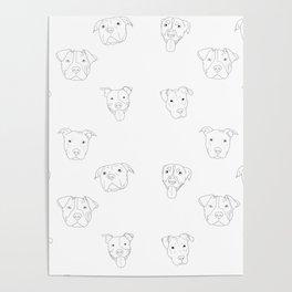 White pit bull love Poster