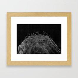 A Shudder In Fluttering Burrows Framed Art Print