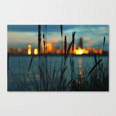Lustre Canvas Print