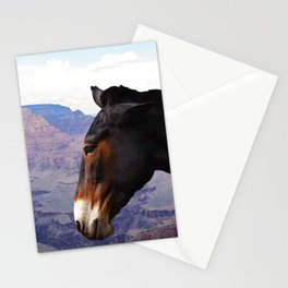 Grand Canyon Mule Stationery Cards