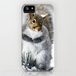 Winter Squirrel iPhone Case