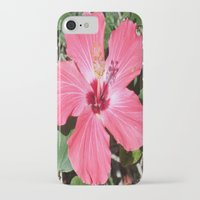 florida iPhone & iPod Cases featuring FLORIDA by Manuel Estrela 113 Art Miami