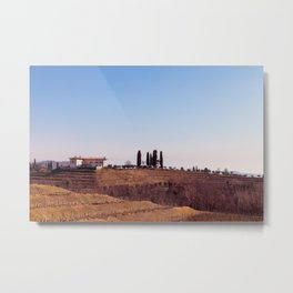 Winter morning in the vineyards of Collio, Italy Metal Print