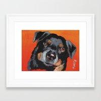 rottweiler Framed Art Prints featuring Rottweiler by Stanley Arts