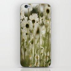 white daisies :) iPhone & iPod Skin