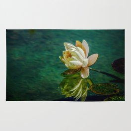 Water Lily after rain Rug