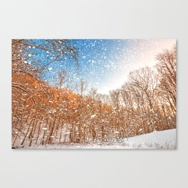 Snow Spattered Winter Forest Canvas Print