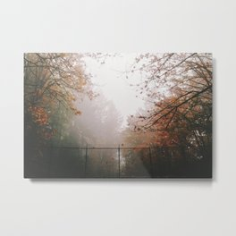 Trees and Fog V Metal Print