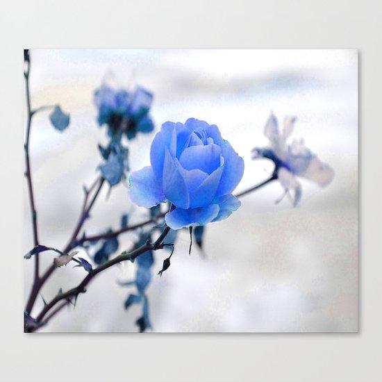 Blue Rose Simplicity Canvas Print