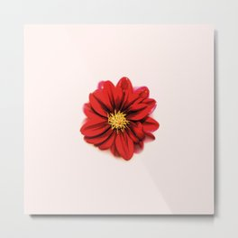 Sunken Flower Metal Print