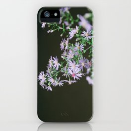 watkins glen aster iPhone Case