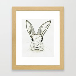 The Hare - unedited Framed Art Print