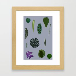 A non-scientific botanical investigation of the indoor plant. Framed Art Print