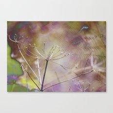 Spiderweb :: Come Hither Canvas Print
