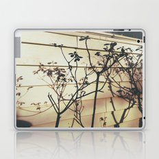 Branches Reflections Laptop & iPad Skin