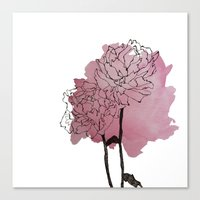 peonies Canvas Prints featuring peonies by morgan kendall