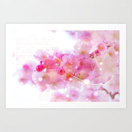 Japanese Sakura Tree with Pastel Pink Blossoms Art Print