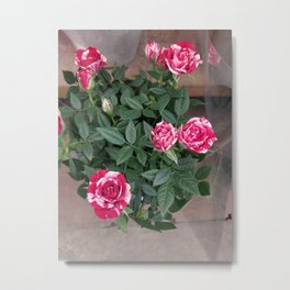 Painting the Roses Red Metal Print