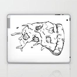 Flying Pizza Laptop & iPad Skin