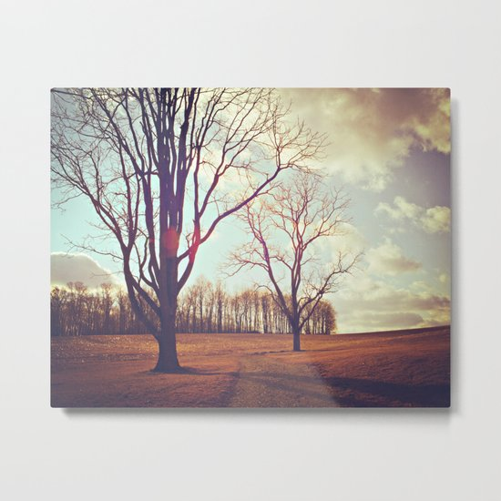 Warmth of Winter  Metal Print