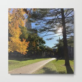 Golden autumn day Metal Print