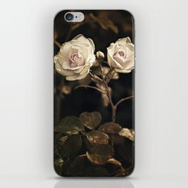 Two pale roses in the garden. iPhone Skin