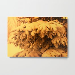 Snowy Spruce Needles 2 Metal Print